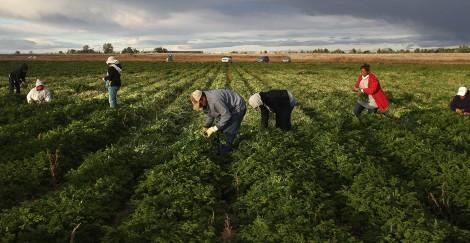 migrant-farm-workers-alabama